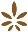 EARTH_TO_MIND_Icon
